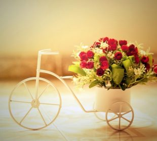 What To Expect from Flower Delivery Services in Hyderabad